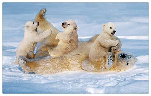 Puzzle Para Adultos 500 Oso Polar De Nieve Y 3 Ositos Jugando Adecuado Para Mayores De 12 Años