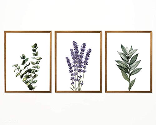 Botanical Lavender Eucalyptus Print - 8' x 10' - Unframed, Watercolor Floral Green Poster, Green Plant Lavender Wall Decor, Farmhouse Home Decor Set of 3