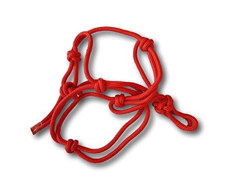 Knotenhalfter verstellbar optimal für die Bodenarbeit und Pferdeausbildung, reiten, Halfter (Shetty, Rot)