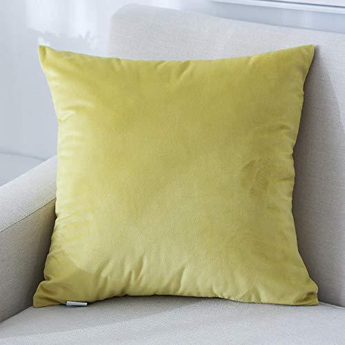 LYTFQ Federe Cuscini Divano Cuscino Quadrato Grande Cuscino in Pelle Scamosciata Morbido Velluto Divano Cuscino del Soggiorno-Certosa_70 * 70 Cm (Incluso Il Nucleo)