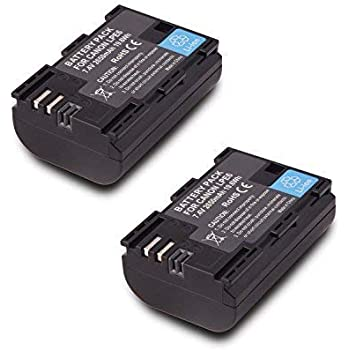 2 Pack Replacement Canon LP-E6 LP E6N Battery for Canon 60D, 70D, 80D, 5DS R, 5D Mark II III IV, 6D, 7D, C700, XC15, Cameras (2650mAh, 100% Compatible with Original)