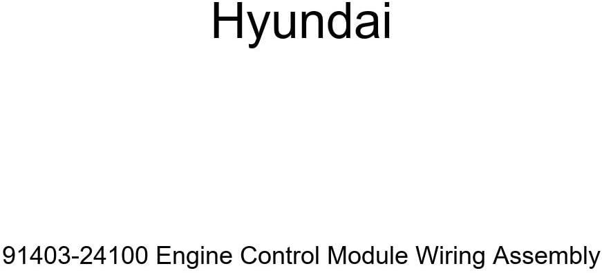 Genuine Hyundai It is very popular 91403-24100 Engine Max 59% OFF Control Assembl Module Wiring