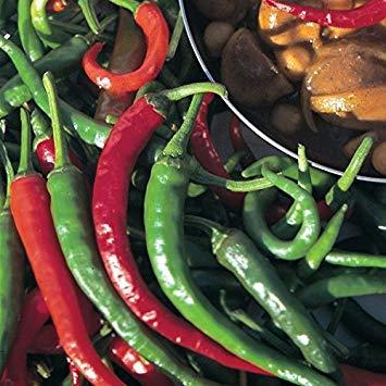 SANHOC Samen-Paket: Pfeffer-Paprika - Lange Slim - SEED