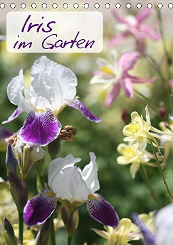 Iris im Garten (Tischkalender 2021 DIN...