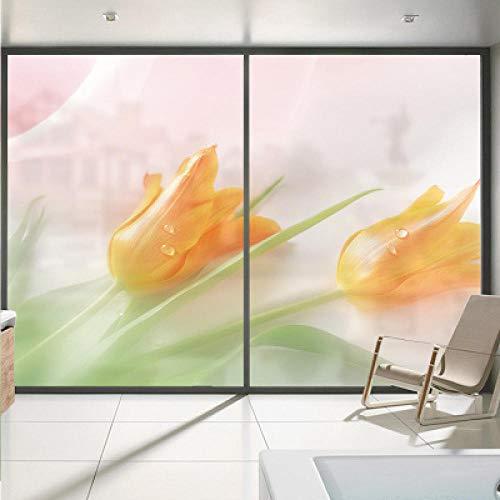 Vinilo para Ventana por tamaño, Flor, Ventana de Vidrio esmerilada electrostática, Adhesivo, Transparente, Opaco, baño, Cocina, celofán, Oficina, película-50X200 cm