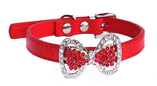 collier pour chien femelle rouge