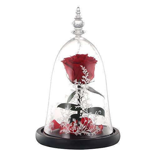 DeeCozy La Bella y la Bestia Rosa, Flor de simulación para el día de San Valentín, día de la Madre, Aniversario, Boda, Regalos de cumpleaños