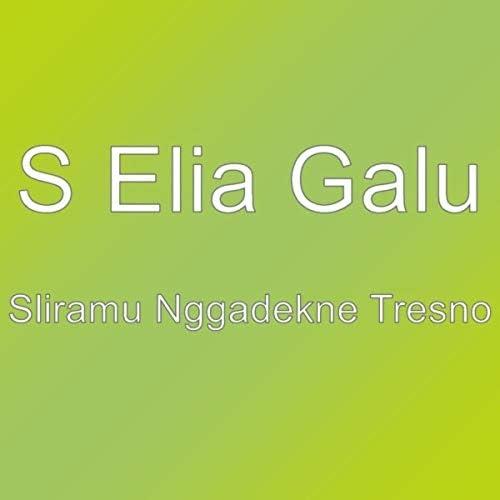 S Elia Galu