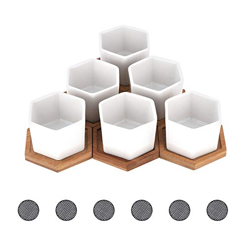 Coolty 6pcs Mini Maceta Suculenta de Cerámica Hexagonal Blanco Cactus Suculentos Bonsái Maceta con Bandeja de Bambú y Almohadilla de Malla para Decoración del Hogar y la Oficina Regalo, 8.1CM