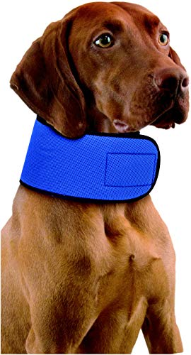 Penn-Plax Glacial Gear Cooling Collar for Dogs (Med)
