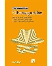 Ciberseguridad: 119 (Qué sabemos de)