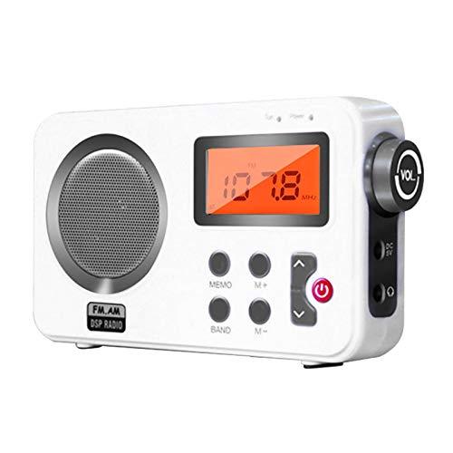 DSFSAEG Altavoz de radio de ducha, radio FM/AM con pantalla LCD, radio estéreo portátil con puerto de auriculares para el hogar, playa, bañera de hidromasaje, baño, al aire libre