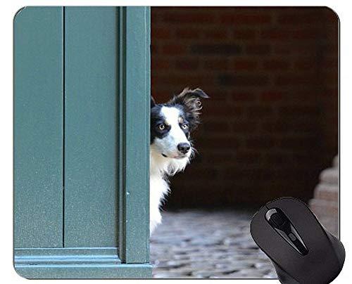 German Shepherd Grass Sitting Dog Mousepads und Border Collie Mouse-Pads Kurzfristiger Geschenk-Bedarf?