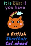 It is best if you havea British Shorthair Cat ahead : A guide for British shorthair cats including British Blue.: lined notebook / journal , page 120,6x9