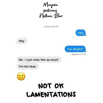 Not Ok (Lamentations) [feat. Nathan Blur]