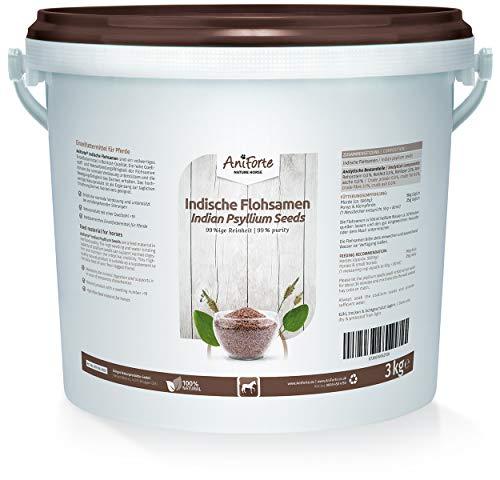 AniForte Flohsamen für Pferde 3kg - Reich an Ballaststoffen & Schleimstoffen, Indische Rohkost Qualität, Reinigung Magen-Darm-Trakt, bei Übergewicht, Einzelfuttermittel