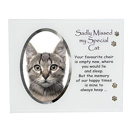 Widdle vieringen glas fotolijst met tekst huisdier Memorial Memory - Special Cat 5678