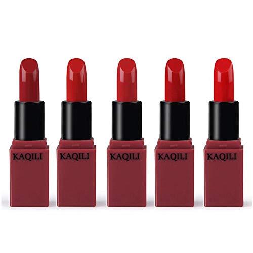 5 Colors/Set Mini Vitamin E Lipstick Matte Long Lasting Waterproof Moisturizing Lipgloss Cosmetic Make Up Set (Red Series)