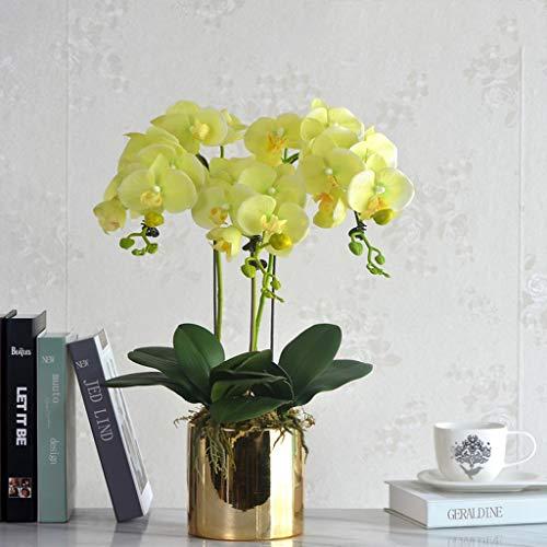 Phalaenopsis Bloemstuk, natuurlijk ogende Artificial Orchid Plant met keramische Pot Bloemen huis op Opsieren (Color : C)