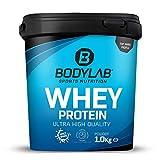Bodylab24 Whey Protein 1kg | Eiweißpulver, Protein-Shake für Kraftsport & Fitness | Kann den Muskelaufbau unterstützen | Protein-Pulver mit 80% Eiweiß | Aspartamfrei | Vanille