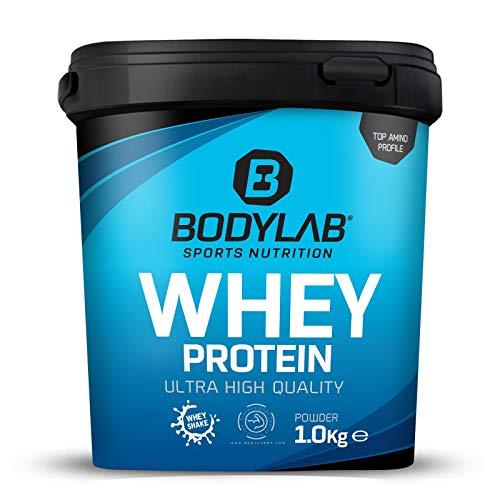 Bodylab24 Whey Protein 1kg | Eiweißpulver, Protein-Shake für Kraftsport & Fitness | Kann den Muskelaufbau unterstützen | Protein-Pulver mit 80% Eiweiß | Aspartamfrei | Erdbeer