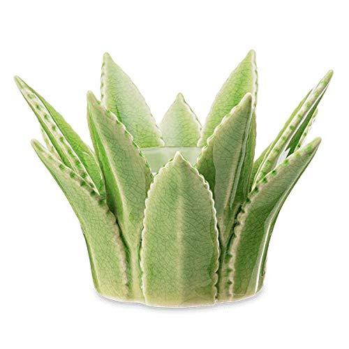 Pintalabios Aloe Vera  marca Scentsy