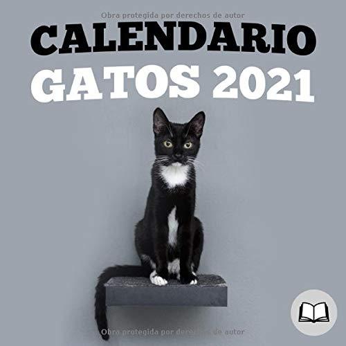 Calendario gatos 2021