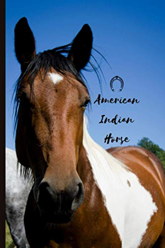 American Indian Horse: Journal and Notebook - Composition Size (6'x9') With 120 Lined Pages, Perfect for Journal, Doodling, Sketching and Notes