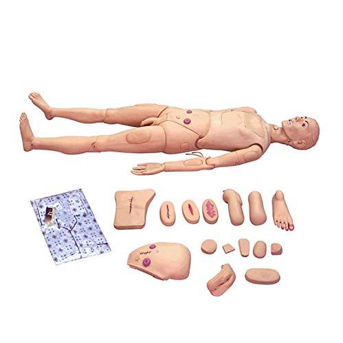 GHDE&MD Menschliche Puppe, Lebensgröße Krankenpflegepuppe zum Nursing Medical Ausbildung Lehre & Bildung Medizinische Versorgung