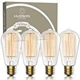 Vintage Incandescent Edison Light Bulbs: 60 Watt, 2100K Warm White Lightbulbs - E26 Base - 230 Lumens - Clear Glass - Dimmable Antique Filament ST64 Light Bulb Set - 4 Pack