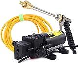 Dispositivo de lavado de automóviles de alta presión de alta presión Toma de lavado de automóviles de alta presión eléctrica 12V lavadora de automóviles Portátil Bomba de agua de lavado de automóviles