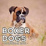 Boxer Dogs Calendar 2022: 16-Month Calendar, Cute Gift Idea For Boxer Dog Lovers Men & Women