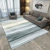 Happves Home Alfombra de diseño con Corte a Rayas Modelo de Rayas Tinta línea Plateada contemporáneas de área Mediana Alfombra de Piso Chindi de algodón Multicolor -120x170cm