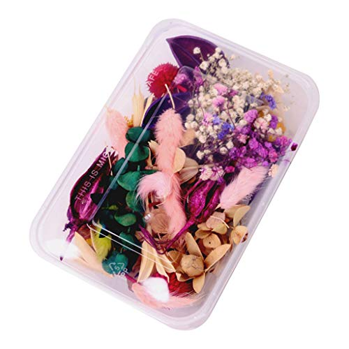 YU-NIYUT 1Box Crystal Epoxy Filler Dry Flower Mixed Nail Stickers Decorations Art Crafts for DIY Craft Resin Jewelry Making Art Craft