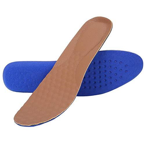 Wosune Plantilla, Plantilla Deportiva con Almohadilla para Zapatos, Mujer Unisex para Hombre para Deporte Cualquier Calzado(S (35-40 Yards))