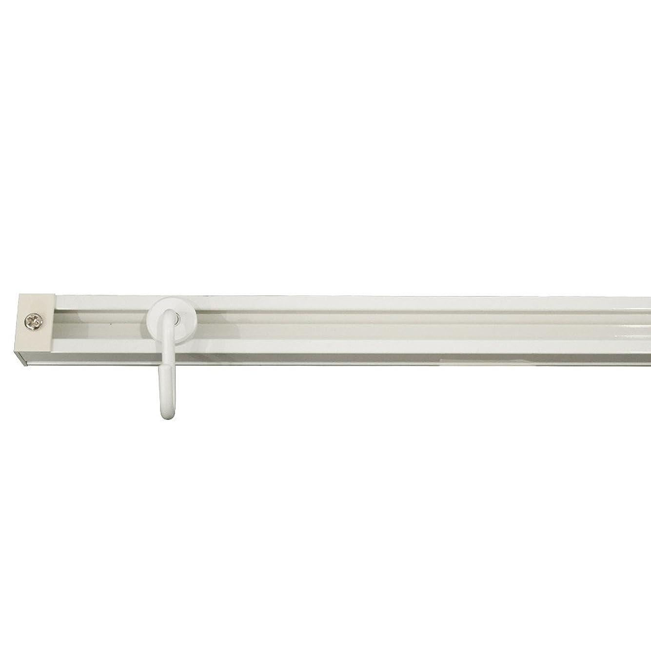 意図的必要条件反対にピクチャーレール ルーミー17 標準セット壁付用 ■ホワイト ▼300cm JQ5