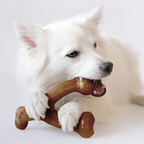 Product Image 2: Benebone Wishbone Durable Dog Chew Toy
