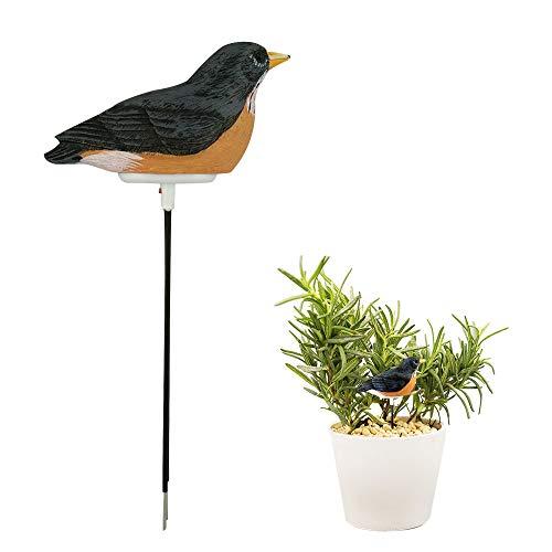 Haavpoois hars vogels, bodem, luchtvochtigheid, teller voor planten, sensor, tester voor binnen, bonsai, tuin, boerderij, herinnering grijs.