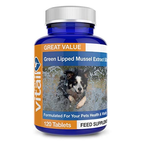 Green Lipped Mussel for Dogs, 500mg. 120 Tablets. Formulated for Your Dogs Health and Vitality.