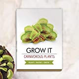 Un regalo meraviglioso che permette di coltivare il proprio volare trapr e affascinanti della pianta di lanciatore! Include i semi che possono richiedere molto tempo per crescere, così si prega di essere paziente! Devono essere piantate appena possib...