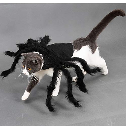 MASCARE Halloween Pet Big Spider Costume Cat Funny Party Dress up Accessories