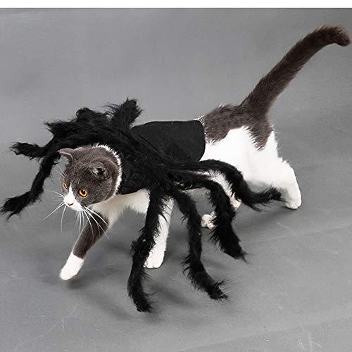 Pet Big Spider Costume