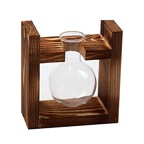 LLXbtd Acorn vase, glass container, flower pot, with retro solid wood stand, suitable for green water plants, suitable for home kitchen table, interior decoration, wedding decoration (1 Bulbs) vases