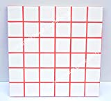 Grout 360 Ragin' Red Sanded Tile Grout for Tile Installation Jobs. Use on Floors, Walls, Back Splashes, Showers, and Mosaics. (10)