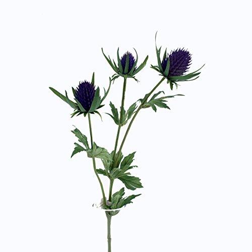 FloristryWarehouse Künstliche Distel Spray Künstliche 66cm violett