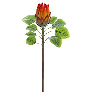 26″ Protea Silk Flower Stem -Orange (Pack of 12)