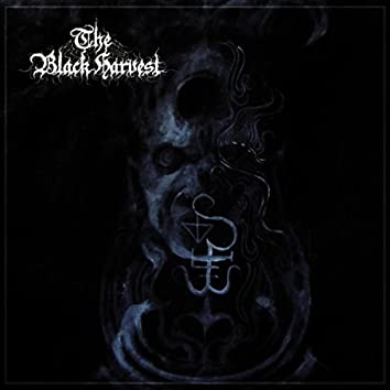 The Black Harvest