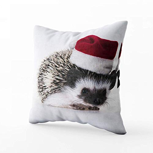 N\A Indoor Outdoor Pillows Covers, Christmas Hedgehog Square Pillowcase Couch Sofa Inch Throw Cushion Cover