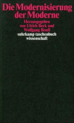 Die Modernisierung der Moderne (suhrkamp taschenbuch wissenschaft)