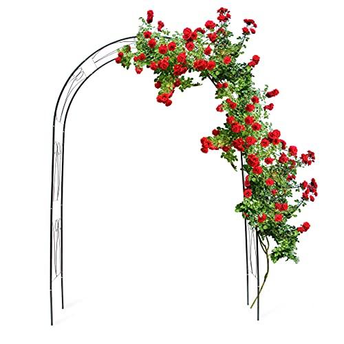Relaxdays 10018869 Arche à Rosiers tuteur roses arche de jardin arceau rosiers Support Plantes Grimpantes 233 x 153 x 39 cm Vert 2,3 m